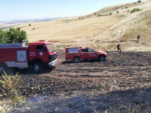 Adıyaman'da 13 dönüm ekili tarla yandı