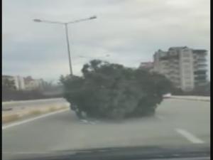 Traktör Sürücüsü Trafiği Hiçe Saydı