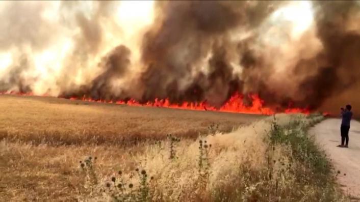 Alevler bin 100 dönüm ekini kül etti