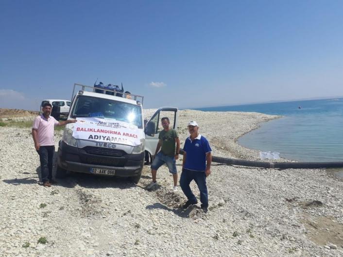 Atatürk Barajına 1,5 milyon yavru balık bırakıldı