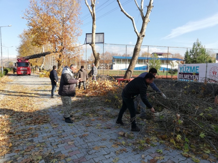 Belediye ekipleri ağaçları buduyor