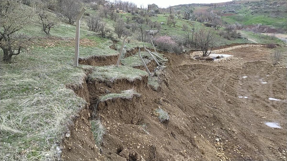 Besni'de Aşırı Yağış Nedeni İle Ağaçlar Devrildi