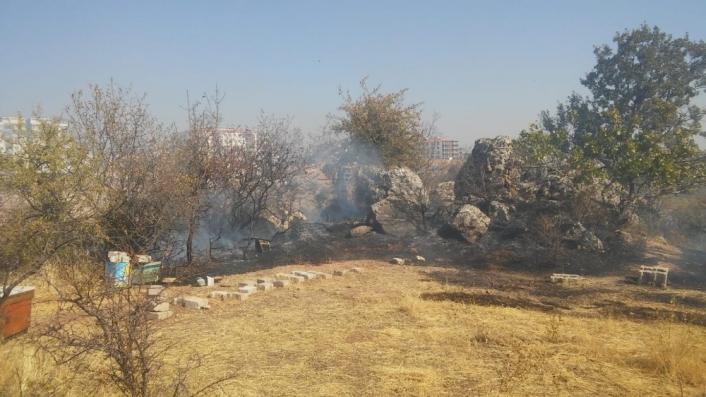 Besni´de bahçe yangını ağaçlara zarar verdi
