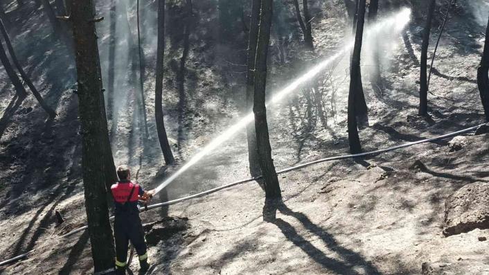 Adıyaman'da Çamlık alanda korkutan yangın