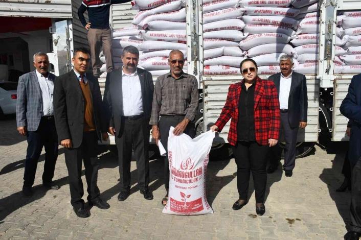 Çiftçilere mercimek tohumu dağıtıldı