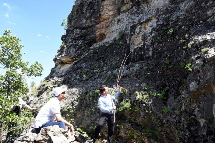 Vali Çuhadar, Haydaran Kaya Kabartmalarını inceledi